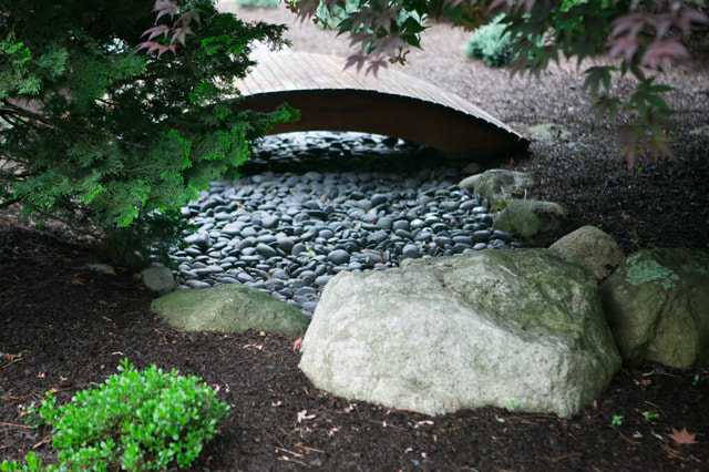 backyard landscape design westport