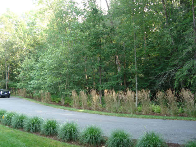 landscape design in weston ct
